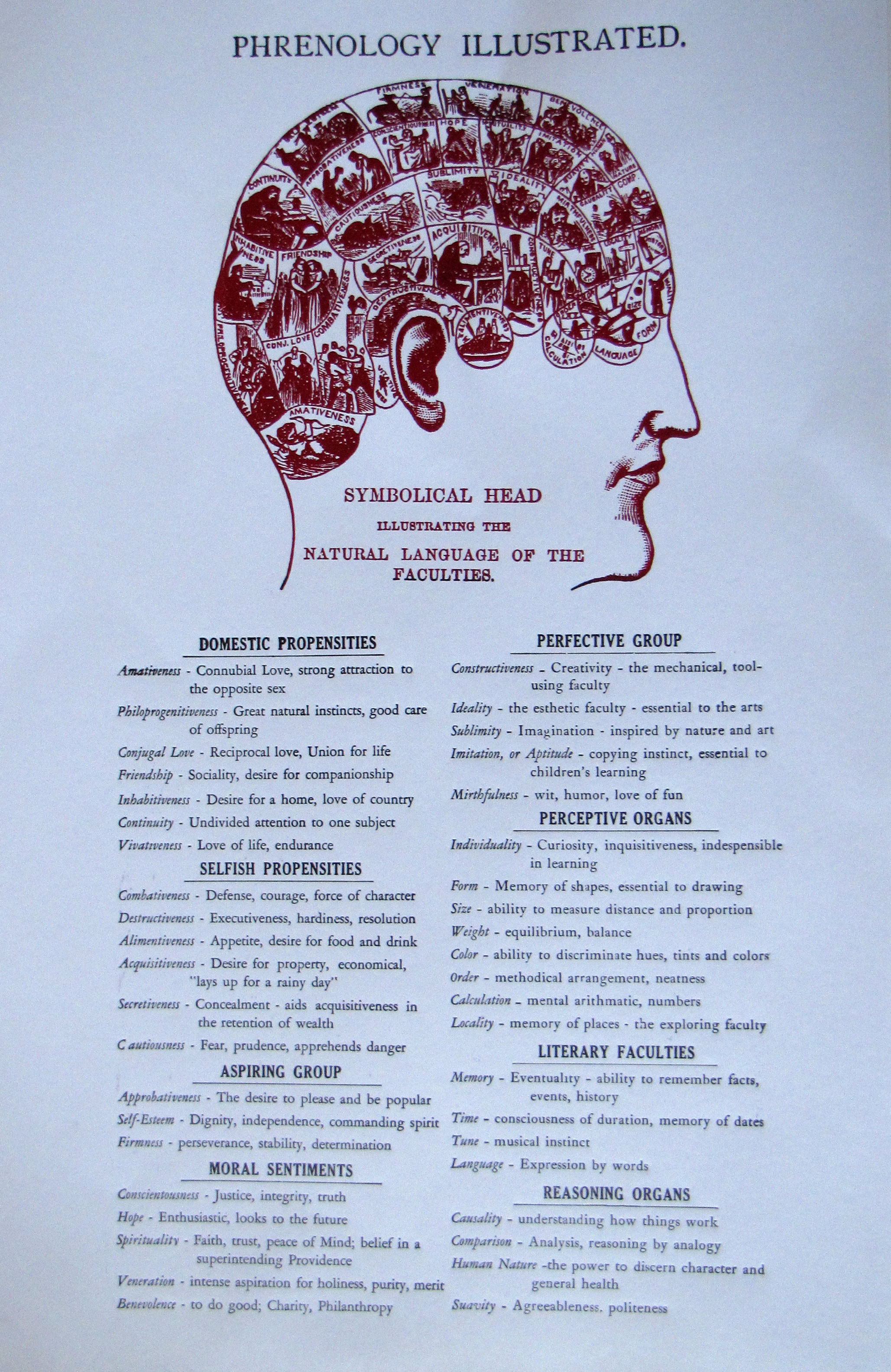 Phrenology poster, The Farmers' Museum Printing Office