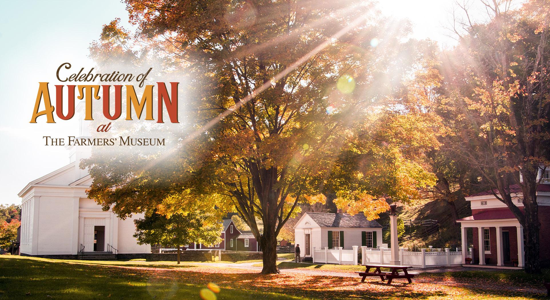 tfm-autumn-main-page-slide2